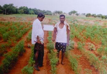 SEDS - India